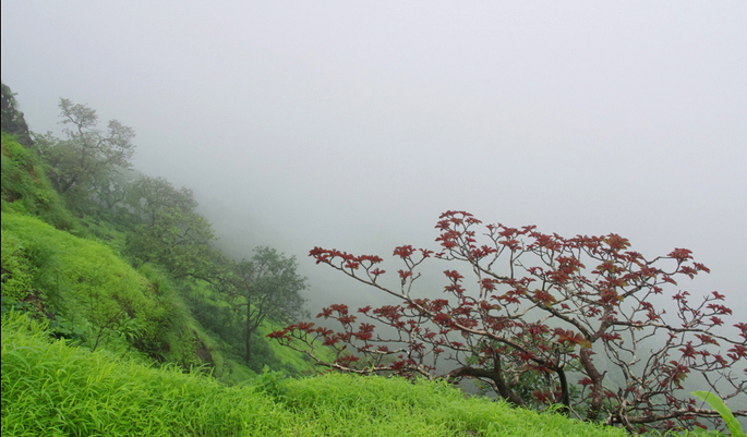 Honeymoon in Matheran