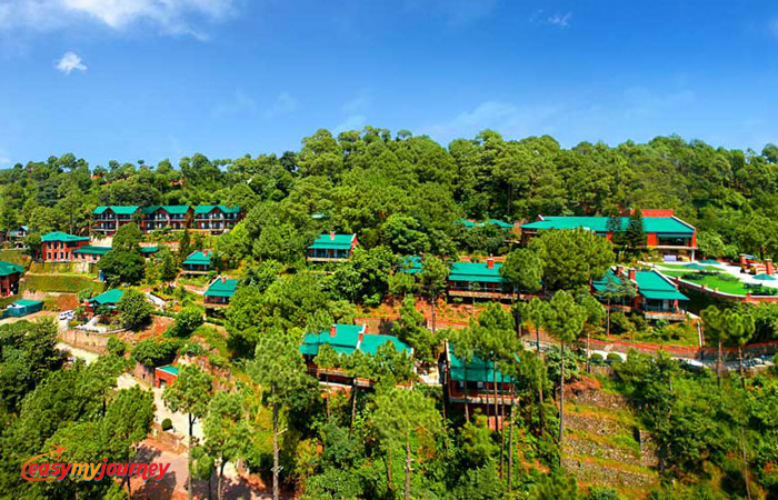 Hotels in Kasauli